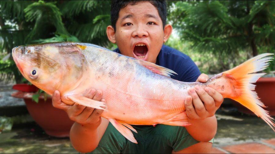 top 8 bai van mau ta con ca hay nhat 5 - Top 8 bài văn mẫu tả con cá hay nhất