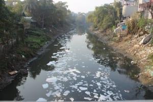 Suy nghĩ về hiện tượng sông ngòi, kênh rạch bị ô nhiễm
